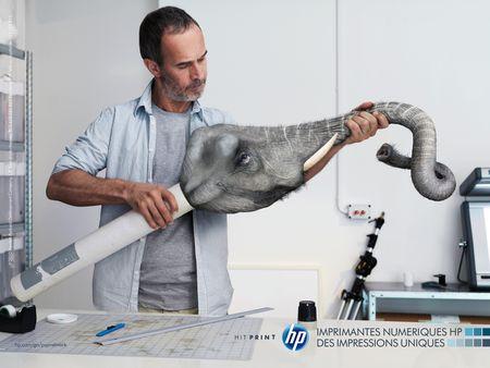 03 Elephant